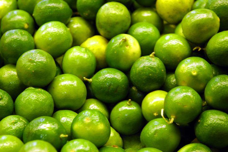Citrus - Wikipedia, the free encyclopedia