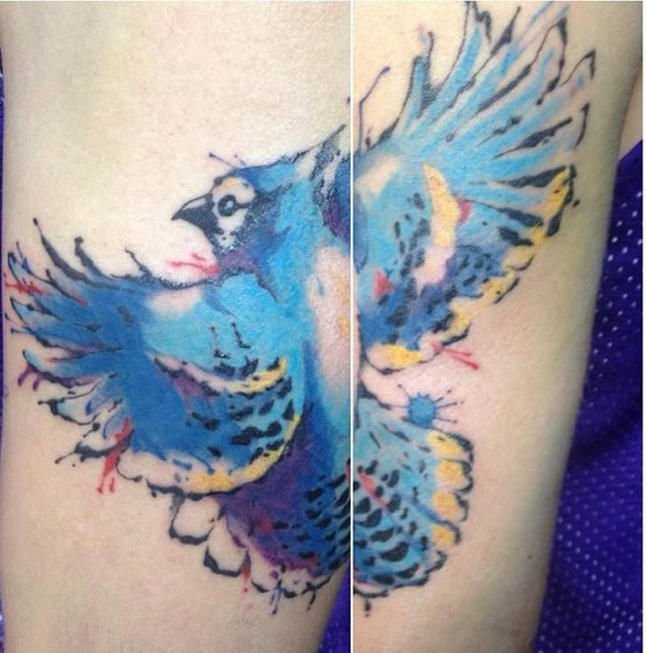 chronic ink tattoo toronto tattoo water colour blue jay tattoo done by neil watercolour. Black Bedroom Furniture Sets. Home Design Ideas