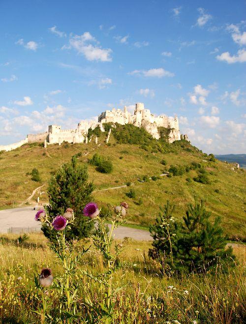 Spiš Castle, Slovakia (by mr.maros)