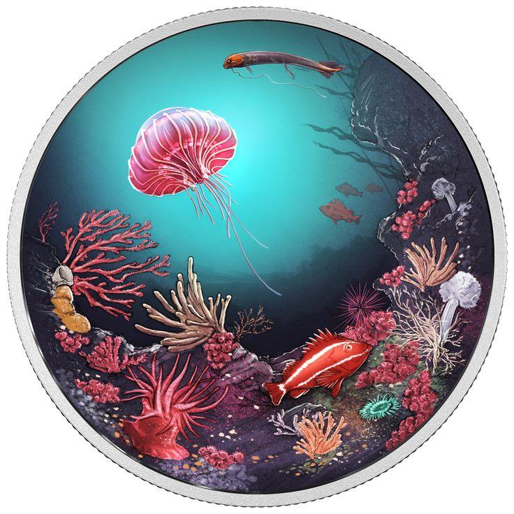 Underwater C Art Print Nautical Wall Sea
