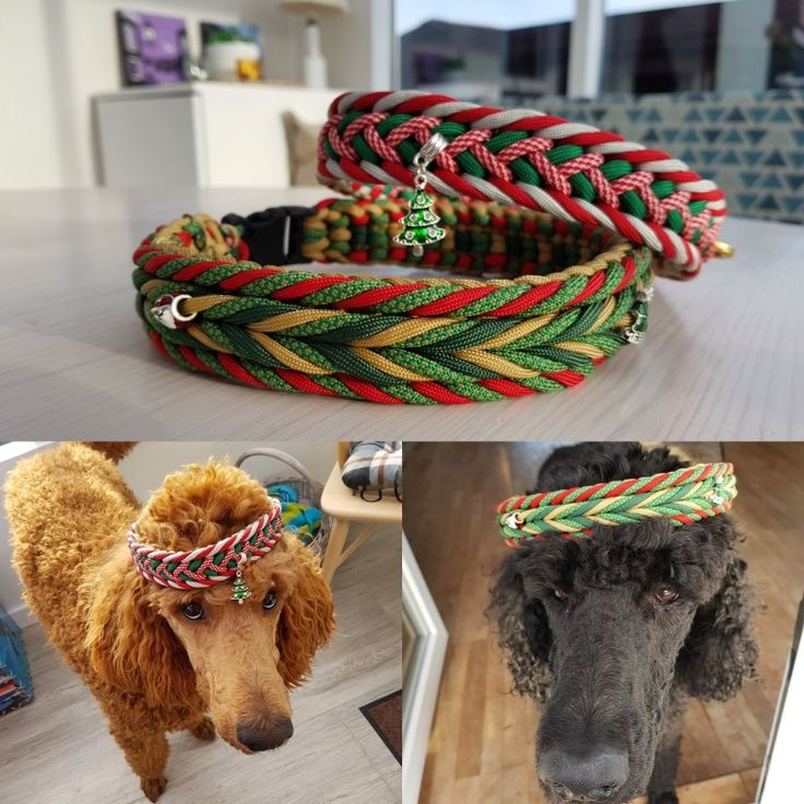 Homemade christmas collars for my boys. Made in Paracord550. Patterns are PolarWutz and Makani's Santa Claus from Swiss-Paracord.
