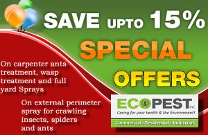 Looking for Pest Control in Edmonton or Grande Prairie? Ecopest Inc comes with special offer to save up to 15 % on pest control in Edmonton,Grande Prairie . Visit - https://goo.gl/R65yXt for more information.
