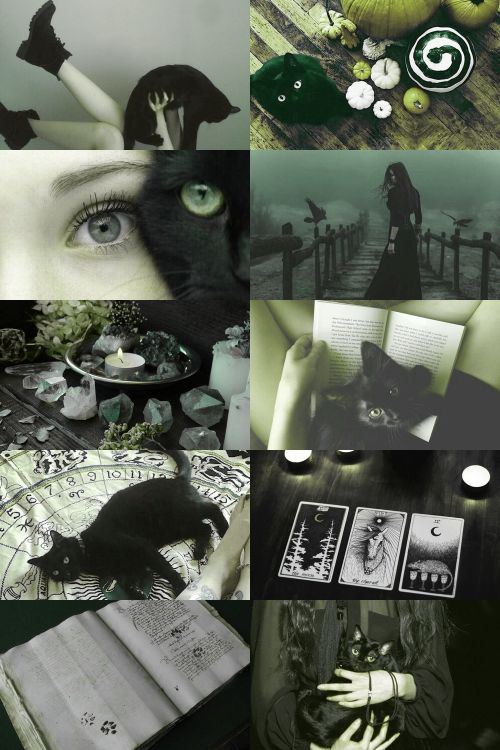 witches cat aesthetic (more here)love my black cat❤️