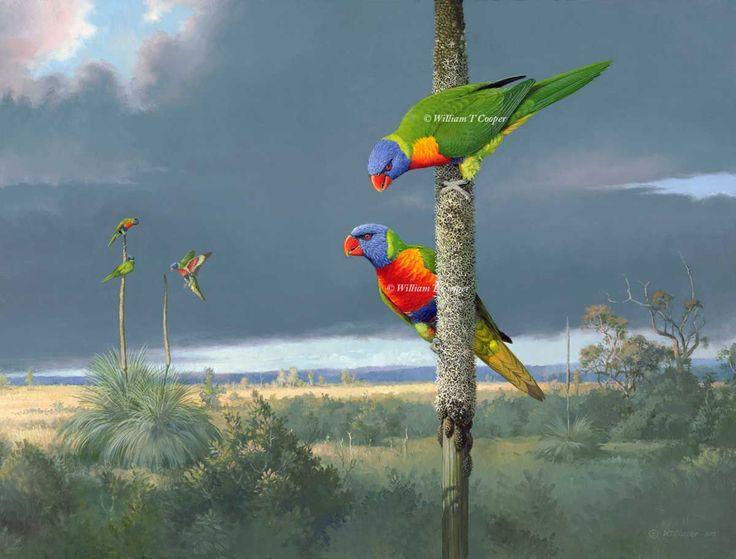 william t cooper artist | William T Cooper :: Rainbows On The Moor
