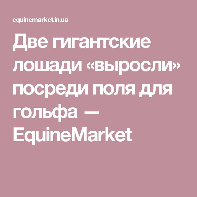Две гигантские лошади «выросли» посреди поля для гольфа — EquineMarket