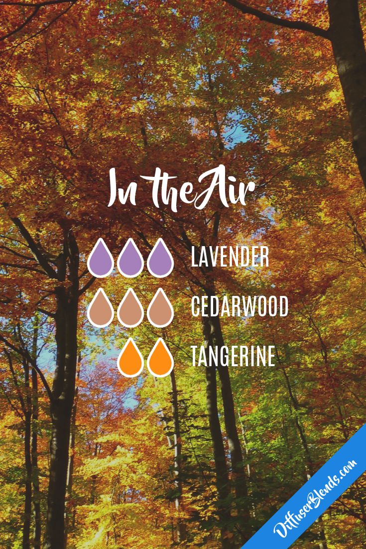 In the Air - Diffuser Blend - Lavender + Cedarwood + Tangerine