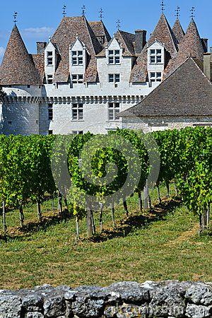 Montbazillac-vignoble de château des Bergerac-Dordogne-Frances
