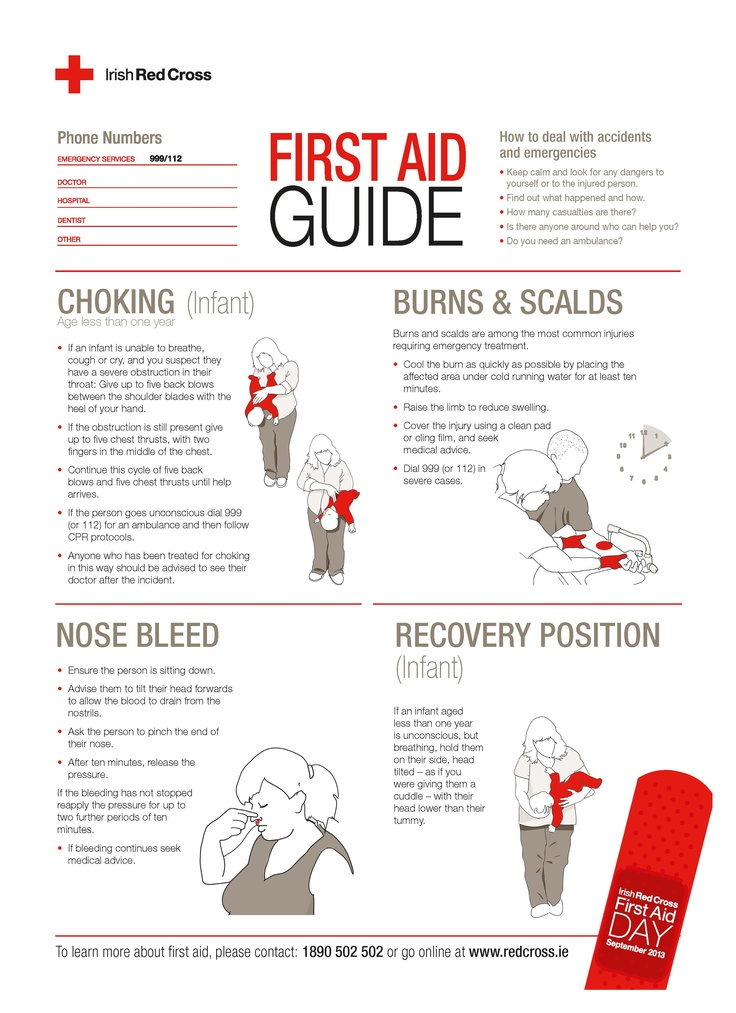 It is a photo of Revered Free Printable First Aid Guide