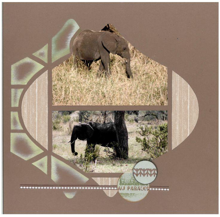 Pour débuter l'An Neuf en beauté, plongeons ensemble dans une vision fantastique d'un troupeau d'éléphants dans les hautes herbes piquées de...