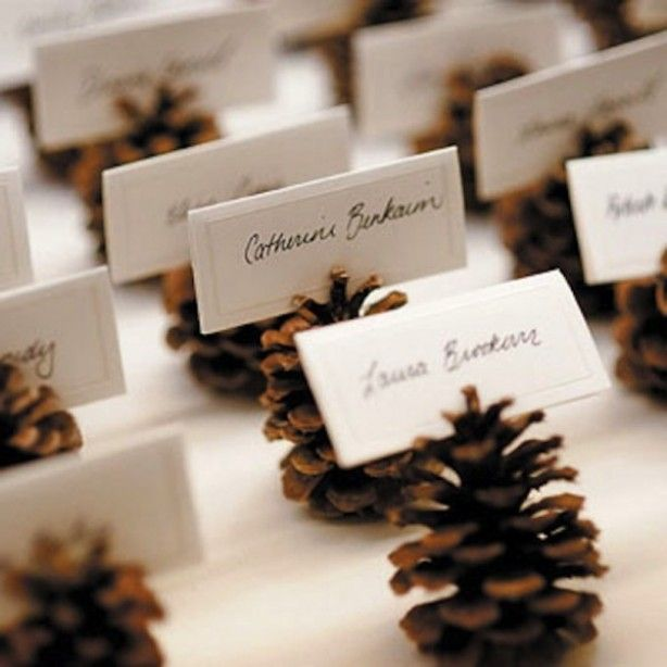 Pine cone place cards  Virginias Vintage Hire Loves!
