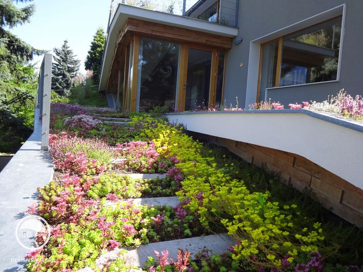 #landscape #architecture #garden #path