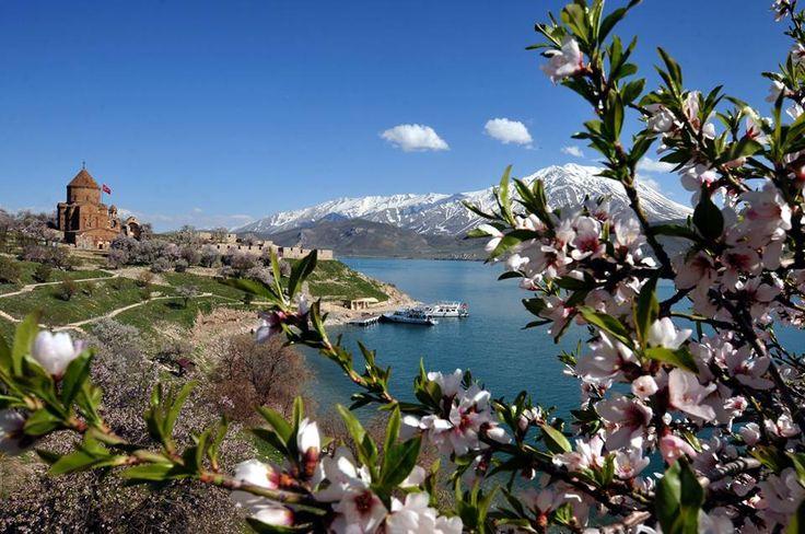 Van'da yerli ile yabancı turistlerin en önemli uğrak yerlerinden Akdamar Adası, havaların ısınması ve badem ağaçlarının çiçek açmasıyla farklı bir güzelliğe büründü.