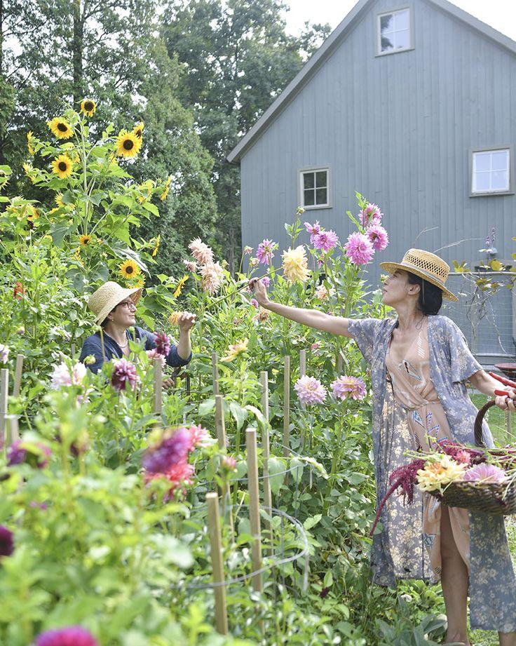 Wonderful Flower Garden