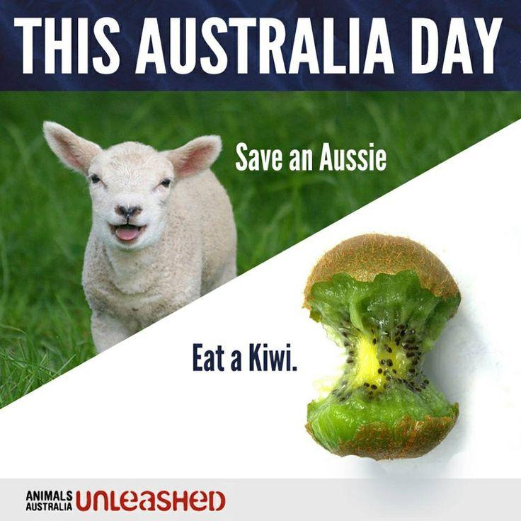8254ac3c5615d1d8a4a285ea2292b7c4 australia day vegan life 38 best australia day (invasion day) images on pinterest australia