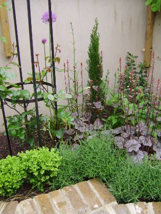 Image of planting in the french courtyard garden for French style courtyard ideas