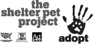 New PSAs from @ The Shelter Pet Project feature adorable adopted dogs and cats. Visit the TheShelterPetProject.org and meet a lovable shelter pet of your own today!