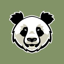 Image result for angry panda vector