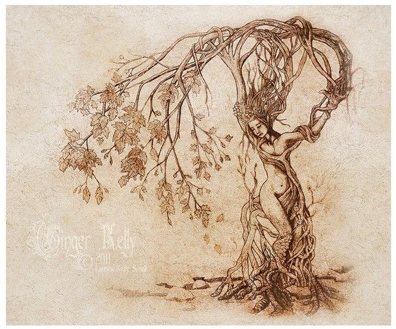 Hedgewitch, 8 x 10 inch Dryad Goddess Tree Illustration Art Print on Etsy, $20.00