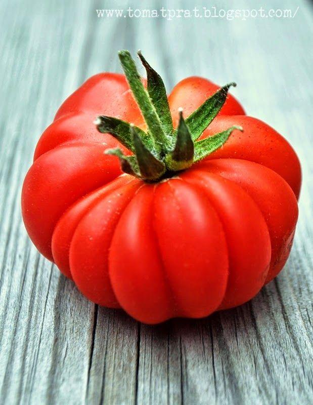 Cotoluto Genovese tomato