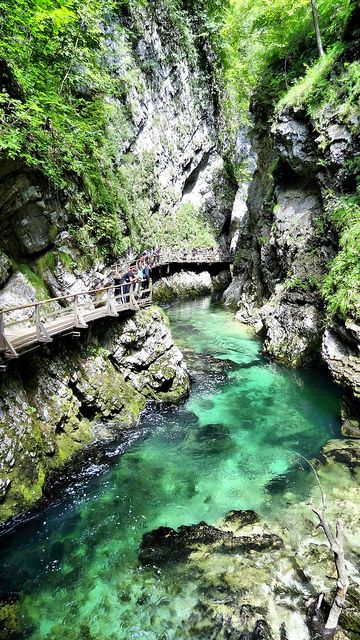 Emerald Stream - Slovenia #nature #river it really seems like Vintgar gorge near to Bled