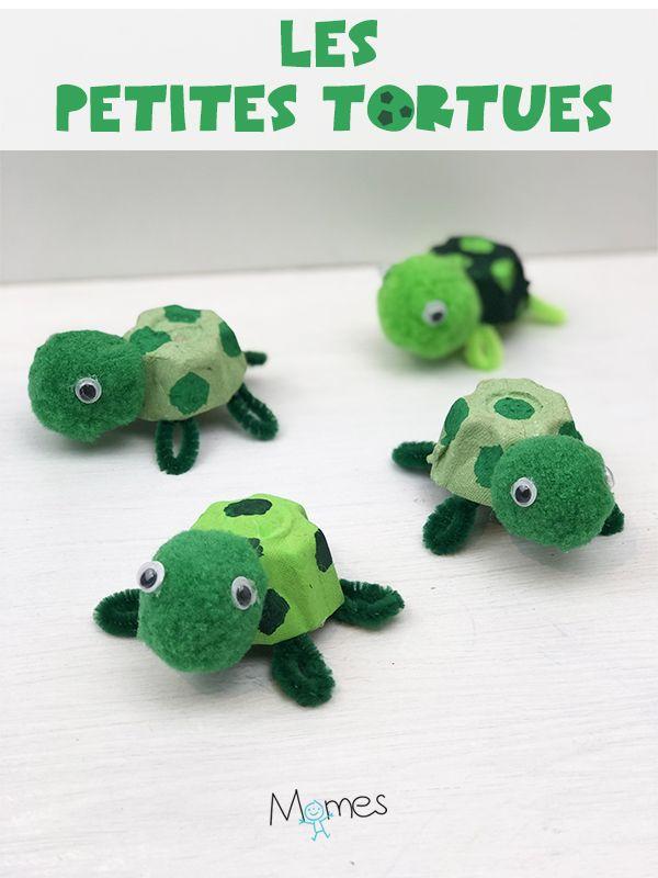 Petits tortues avec carton d'œufs