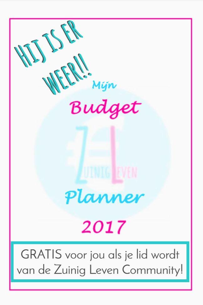 Jouw onmisbare financiële hulp in  2017! Print de pagina's uit zo vaak als je nodig hebt en bind ze in een een leuk boekje.  Hou elke maand jouw budget makkelijk bij en volg Zuinig Leven voor tips en tricks over besparen, (bij)verdienen,DIY, verzorging, familie, recepten, printables en veel meer. We gaan meer doen met minder en zo hou je een groter budget over voor Leuk Leven! Wie wil dat niet? #zuinig #leven #verzorging #besparen #verdienen #printables #DIY #familie #budget #geld #inkomsten