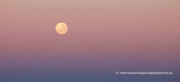Blood Red Moon Setting in the morning over the sea.  Sunrise 09 October 2014  Photograph by Suzanne Phillips  of Susie-Lotta Photography www.susielottaphotography.com.au  pinkmoon-set-oct2014sm