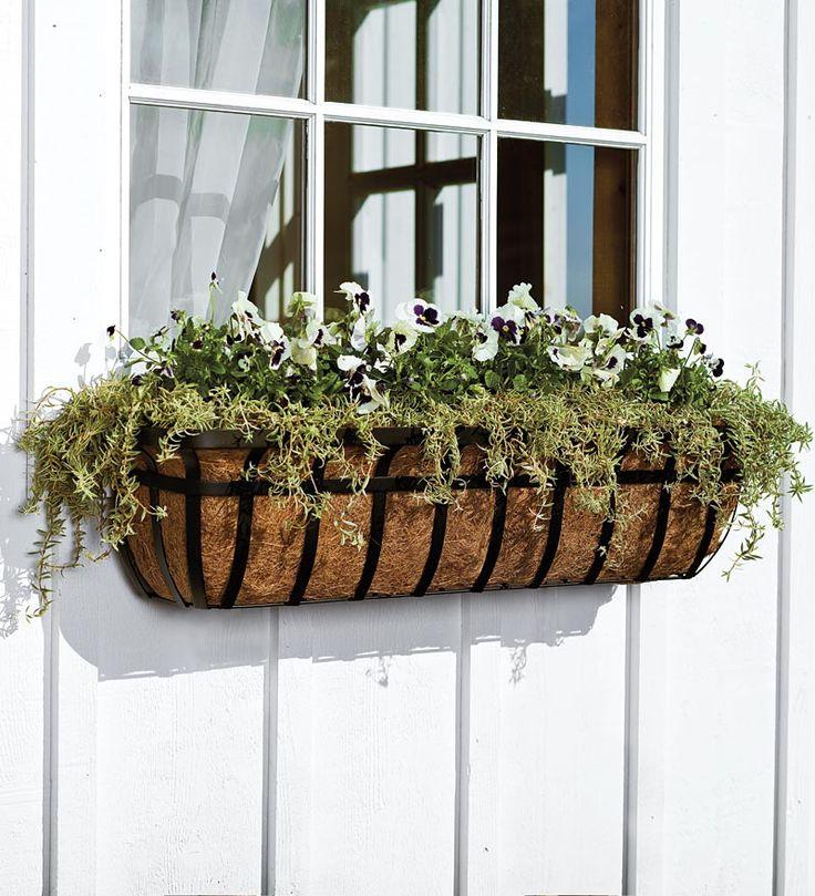 best 25+ window planters ideas on pinterest   window boxes, window