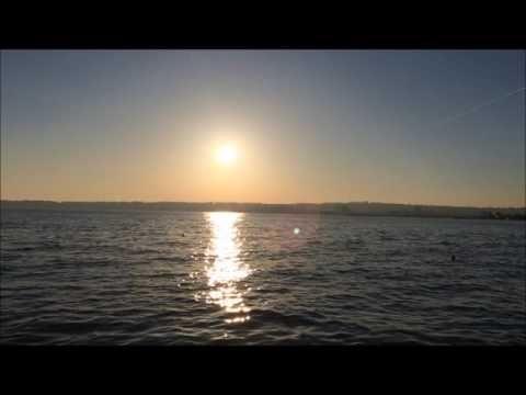 Maalesef - Nino VARON - YouTube