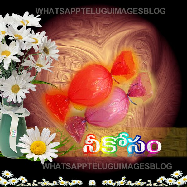 Womens Day Quotes In Telugu: 42 Best Telugu Good Night Quotes Images On Pinterest