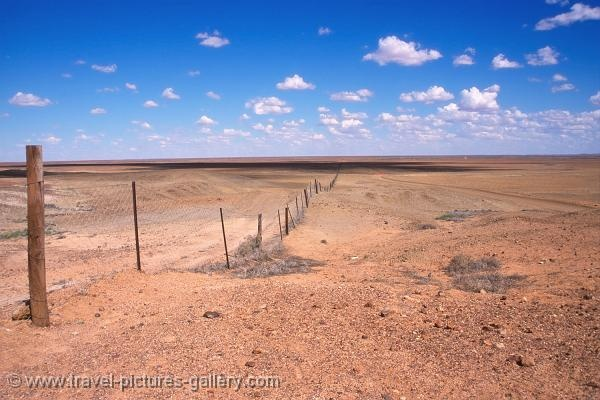 The Rabbit-Proof fence, western Australia. This country isn't messing around when it comes to the use of barbed wire. And I.must.touch.it. :-)