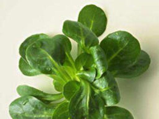 OMÉGA-3 : UNE ARME ANTI-DÉPRIME FACILE À TROUVER  http://www.topsante.com/manger-mieux/mon-alimentation-sante/Nutrition-prenez-gout-aux-Omega-3