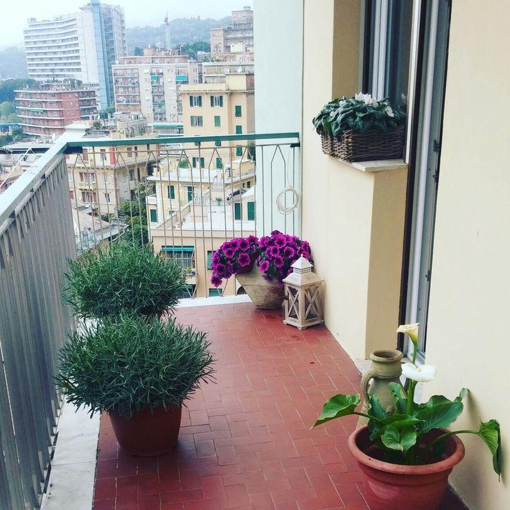 17 migliori idee su vasi da fiori su pinterest fioriere for Vasi x fiori da esterno