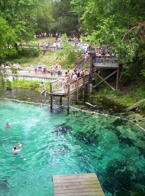 52 best images about florida springs on pinterest devil for Florida state parks cabins