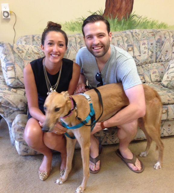 Doris with her new family Melinda and Brooks. Congratulations to this new #fureverfamily! #adoptaretiredracer #gpi #greyhound #greyhoundpetsinc #greyhoundsmakegreatpets