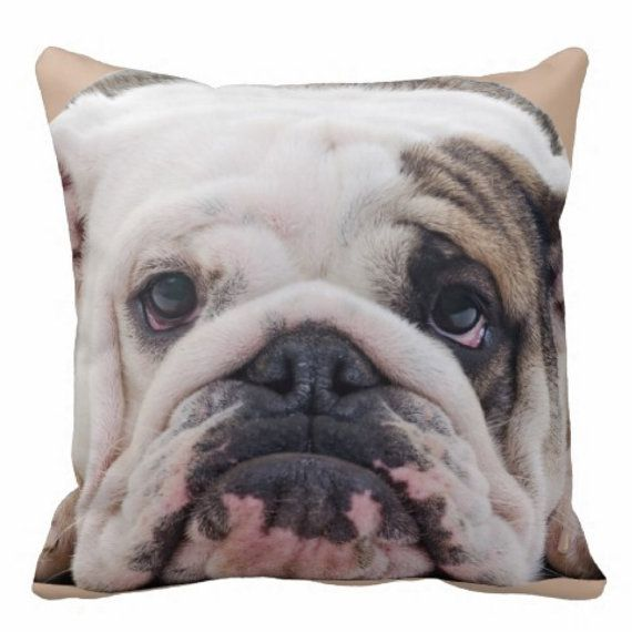 Throw Cushion English bulldog cushion English by InspiredByBronx