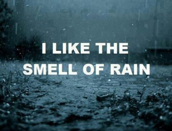 rain quotes in english - photo #13