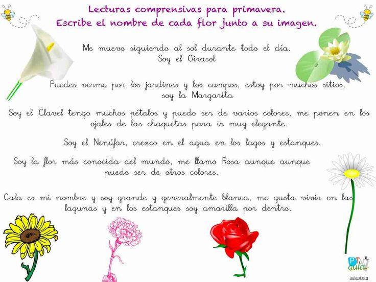 lectura comprensiva de frases flores