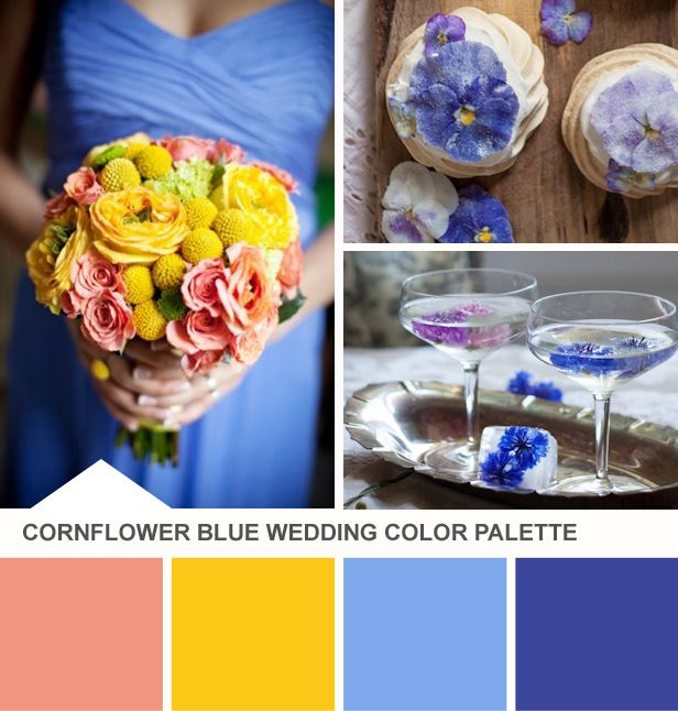 Cornflower and Yellow Wedding Color Palette (http://blog.hgtv.com/design/2014/05/20/tuesday-huesday-cornflower-blue-wedding-color-palette/?soc=pinterest): Yellow Weddings, Color Palette Hmmm, Cornflower Blue Weddings, Yellow Wedding Colors, Color Palette Blue, Blue Wedding Colors, Wedding Color Schemes, Blue Yellow Coral Wedding, Wedding Color Palettes