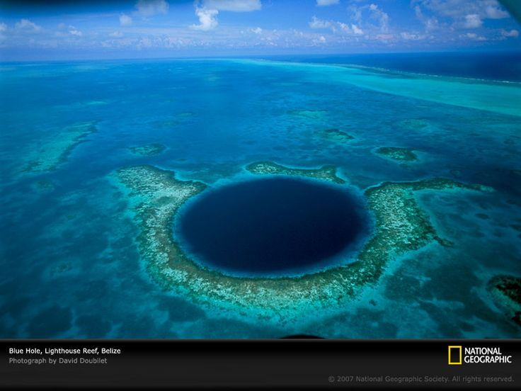 Approximately 60 miles (100 kilometers) from Belize City, the almost perfectly circular Blue Hole is more than 1,000 feet (305 meters) across and some 400 feet (123 meters) deep.The hole is the opening to what was a dry cave system during the Ice Age. When the ice melted and the sea level rose, the caves were flooded, creating what is now a magnet for intrepid divers. Today the Blue Hole is famed for its sponges, barracuda, corals, angelfish—& a school of sharks often seen patrolling the hole.: Buckets Lists, Thegreat, Favorite Places, Bluehole, Caves System, Belize Cities, Places I D, Hole Belize, Blue Hole