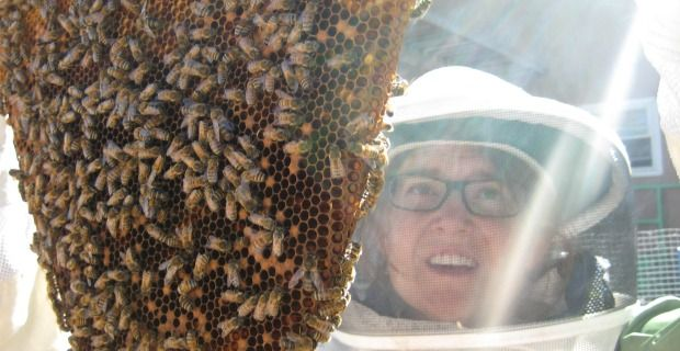 Beekeeping Basics – Hive & Home