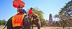 Cómo cuidar el planeta mientras viajas: 7 consejos para ser un viajero responsable