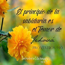 ¿Deseas sabiduría? pídesela a Dios, pero recuerda esta es la clave. https://sendaseternas.blogspot.com.es/ #sabiduria #versiculos #Biblia