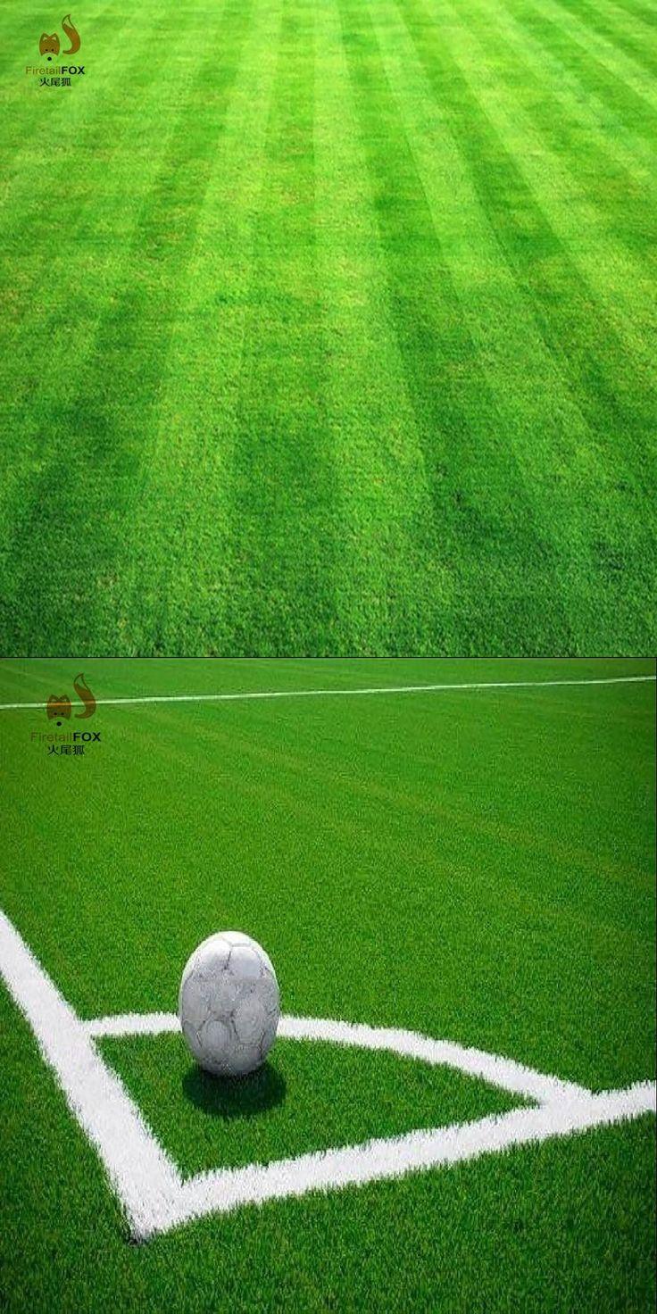 Lawn Turf Seed 500pcs Grass Seeds Fresh Green Soft Runner Turfgrass for home park soccer golf place hardy grass