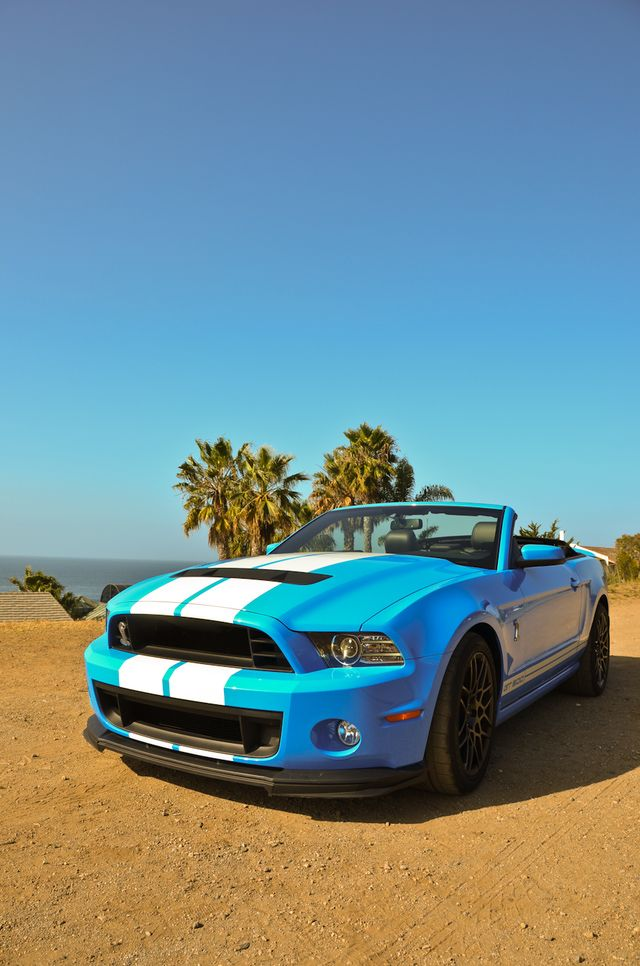 The 25 best 2013 shelby gt500 ideas on pinterest 2013 gt500 the 25 best 2013 shelby gt500 ideas on pinterest 2013 gt500 ford shelby gt 500 and 2014 shelby gt500 sciox Choice Image