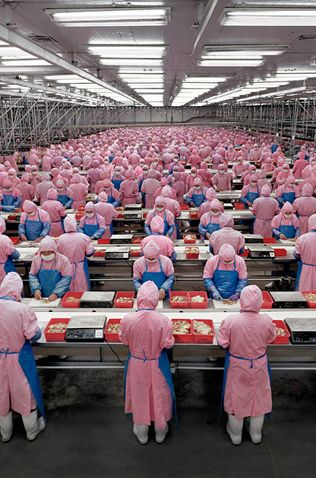 Deda Chicken Processing Plant, Dehui City, Jilin Province, 2005. Ph. by Andreas Gursky