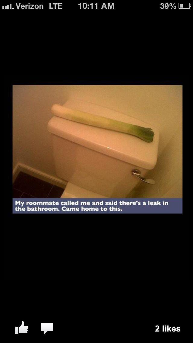 Bathroom Puns Mesmerizing Design Review