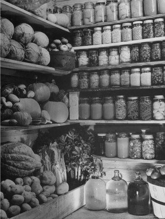 Setting Up A Root Cellar (Article) :: Image: Winter Crops Being Stored in Cellar with Low Humidity So Vegetables Can Be Kept Without Rotting