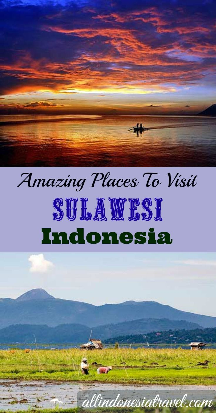 Manado, also known as Menado, is the main gateway to Northern Sulawesi (Sulawesi Utara) to places like Bunaken Island.  Fly in here to access to everywhere around North Sulawesi that is touted to be untouched and pristine beauty. |  http://allindonesiatravel.com