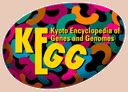 KEGG: Kyoto Encyclopedia of Genes and Genomes - KEGG is a database resource for understanding high-level functions and utilities of the biological system, such as the cell, the organism and the ecosystem, from molecular-level information, especially large-scale molecular datasets generated by genome sequencing and other high-throughput experimental technologies